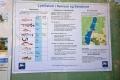 vibfisk Info ved Sejlcentret, Nørresø, aug. 2019